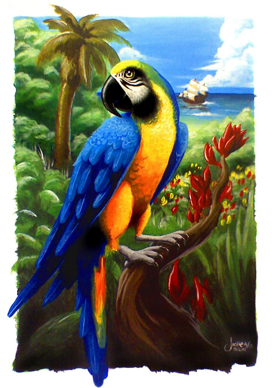 Jack_the_parrot_by_JACKIEthePIRATE
